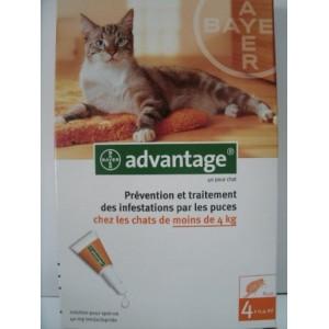 Advantage spot-on chats moins de 4 kg