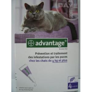 Advantage spot-on chats 4 kg et plus X4 pipettes